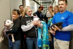 Hurricane Sandy Animals Flown To Safe Haven On Southwest Airline