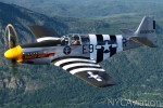 Sessions flies HFF's P-51 Impatient Virgin over the foothills of the Cascades.
