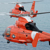 uscg-dolphins-100