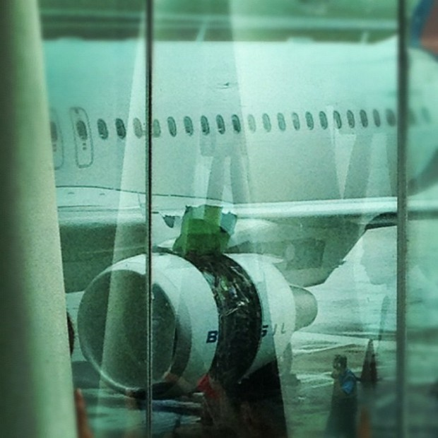 Post-flight look at the broken cowling. (Photo by ruscinc, via Instagram)