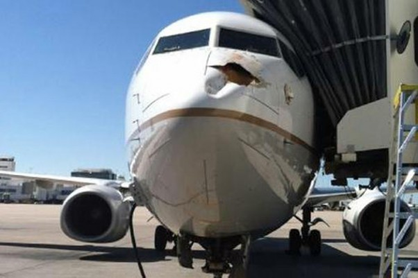 United Flight 1475 hit a big bird near Denver. (Photo via Twitter)