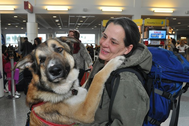 Thor at the airport. (Photo by Alaska Airlines)