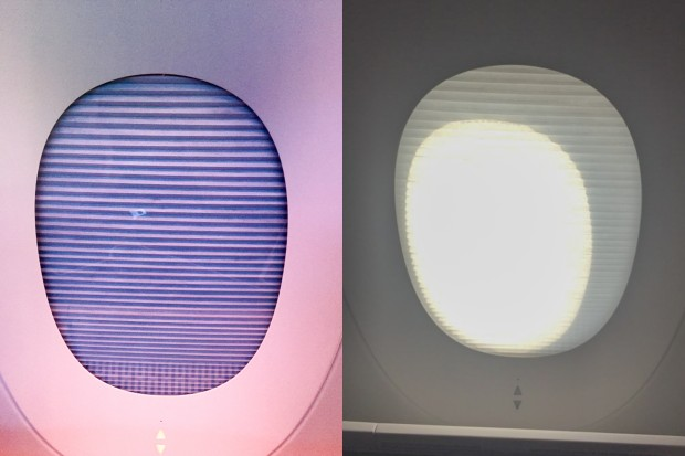 The business class cabin has mechanically dimmed windows with push button controls. There are two panels to each window: one blacks out the window, while the other softens the light like a window shade. The controls for the window shades can be a bit difficult to reach while seated.